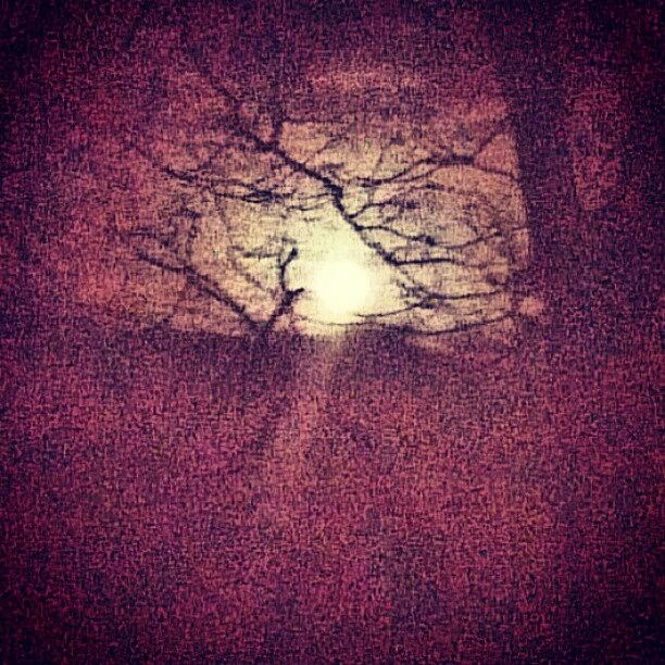 Skyline Photograph - Antique Moon Abstract by Genevieve Esson