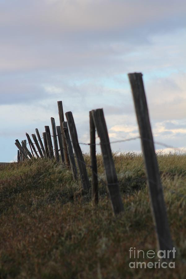 Landscape Photograph - Antique Protection by Brenda Henley