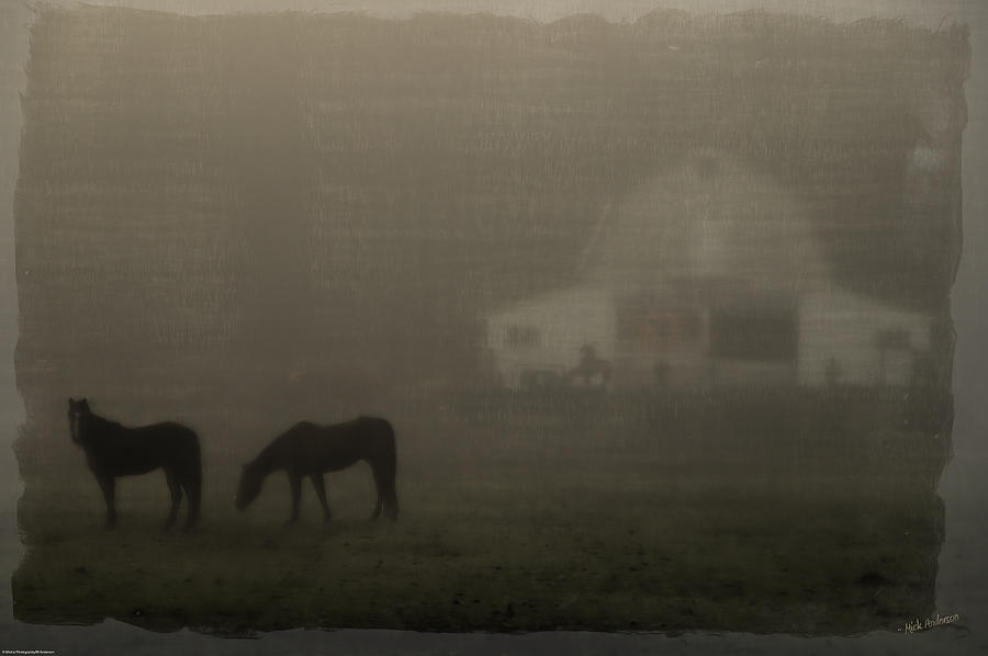 Special Effect Photograph - Antique Scene Of Horses In A Fog by Mick Anderson