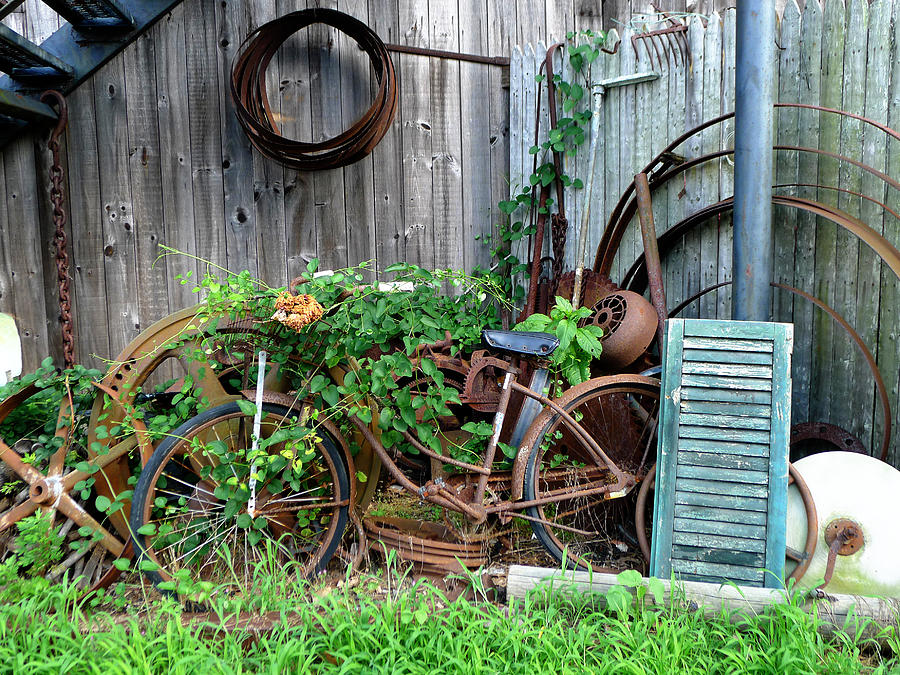 Rust Photograph - Any Old Iron by Richard Reeve