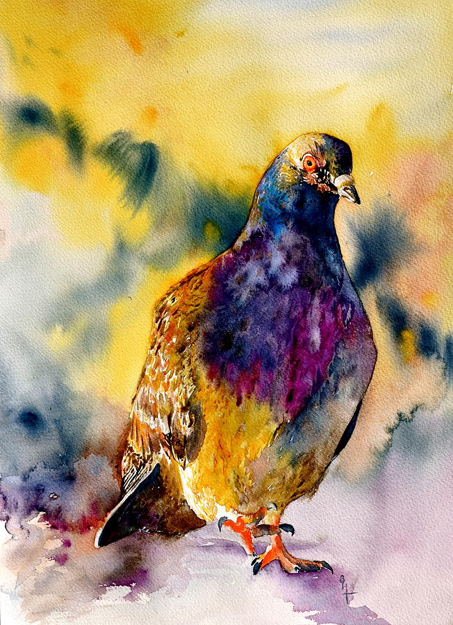 Pigeon Painting - Anytime Anywhere by Beverley Harper Tinsley