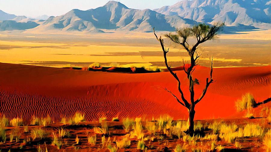 Anza Borrego Desert Southern California Photograph