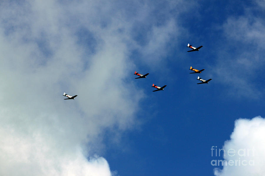 Anzac Day Photograph - Anzac Day 2014 Auckland Harvard Flight by Gee Lyon