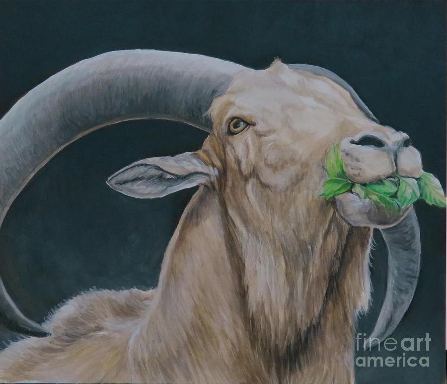 Aoudad Sheep Painting - Aoudad Sheep by Charlotte Yealey