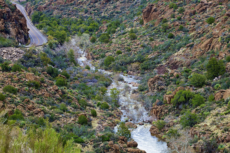 Arizona Photograph - Apache Trail River View by Phill Doherty