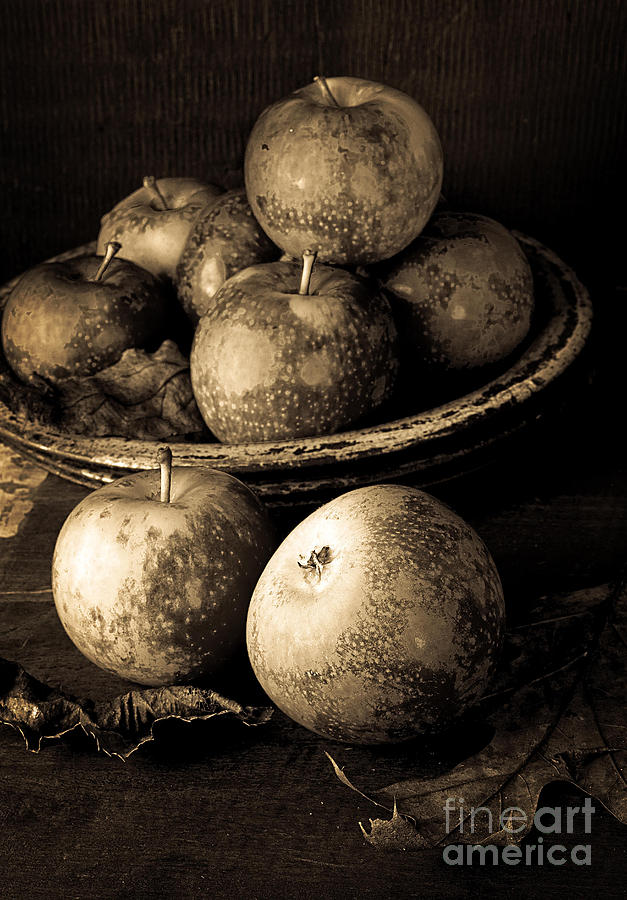 Fruit Photograph - Apple Still Life Black And White by Edward Fielding