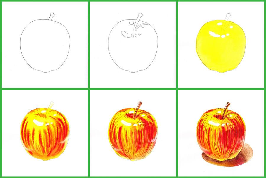 Apple Painting - Apple Study by Irina Sztukowski