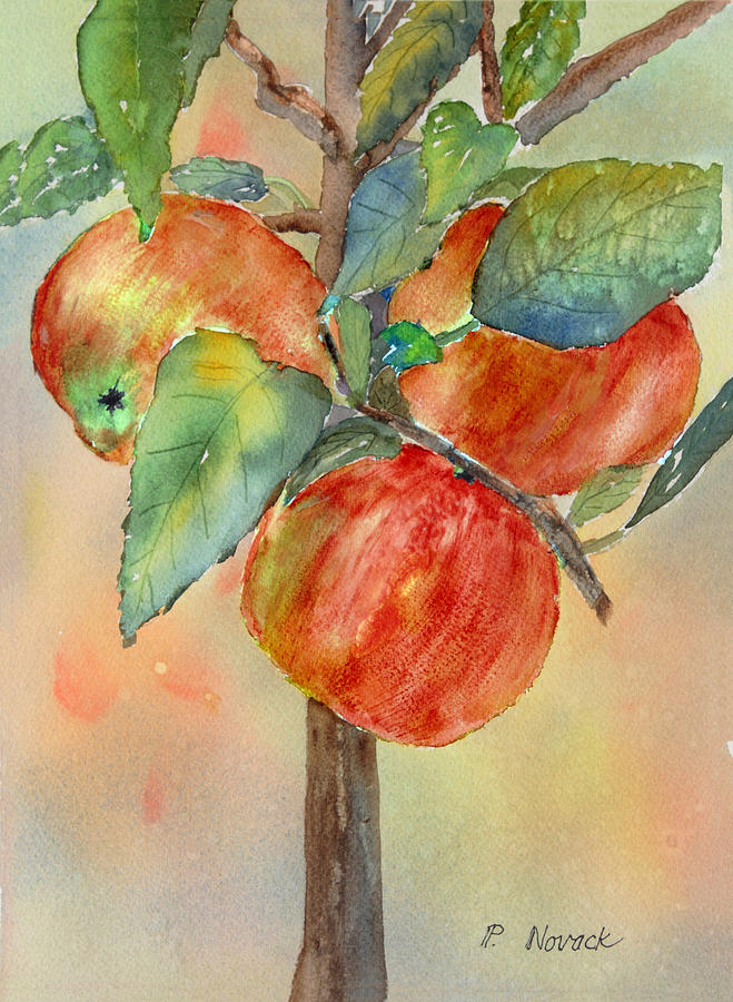 Apple Painting - Apple Tree by Patricia Novack