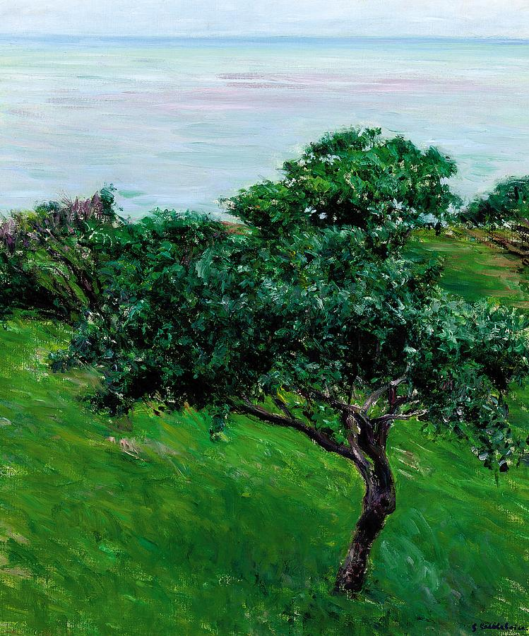 Impressionist; Landscape; Rural; Countryside; France; French; En Plein Air; Plein Air; Apple Tree; Apple Trees; Orchard; Tree; Trees; Green; Fruit Tree; Fruit Trees; Coast; Coastal; Seaside; Seascape; Blue; Green; Trouville; Caillebotte; Gustave; Fruit; Wind; Breeze; Nature; Natural; Impressionism; Tranquil; Tranquility; Leaf; Leaves; Trouville; Scenery Painting - Apple Trees By The Sea Trouville by Gustave Caillebotte