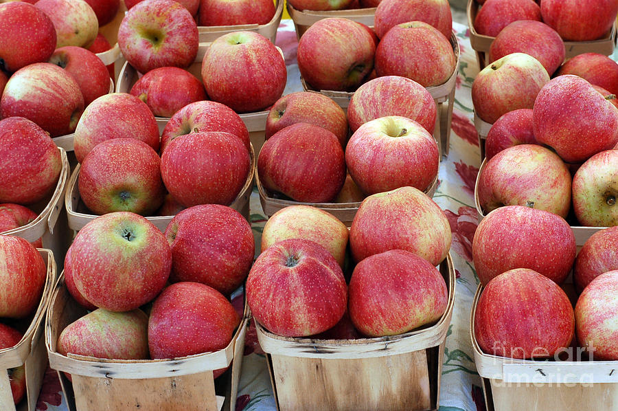 Apple Photograph - Apples In Small Baskets by Paul Velgos