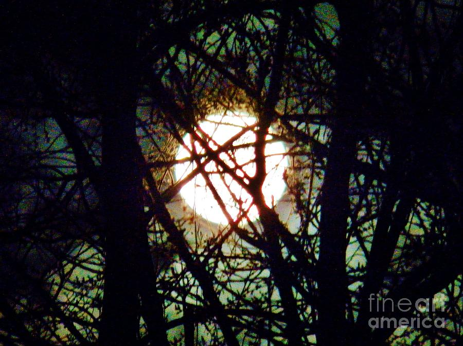 Moon Photograph - April 3 Am Moon by Judy Via-Wolff