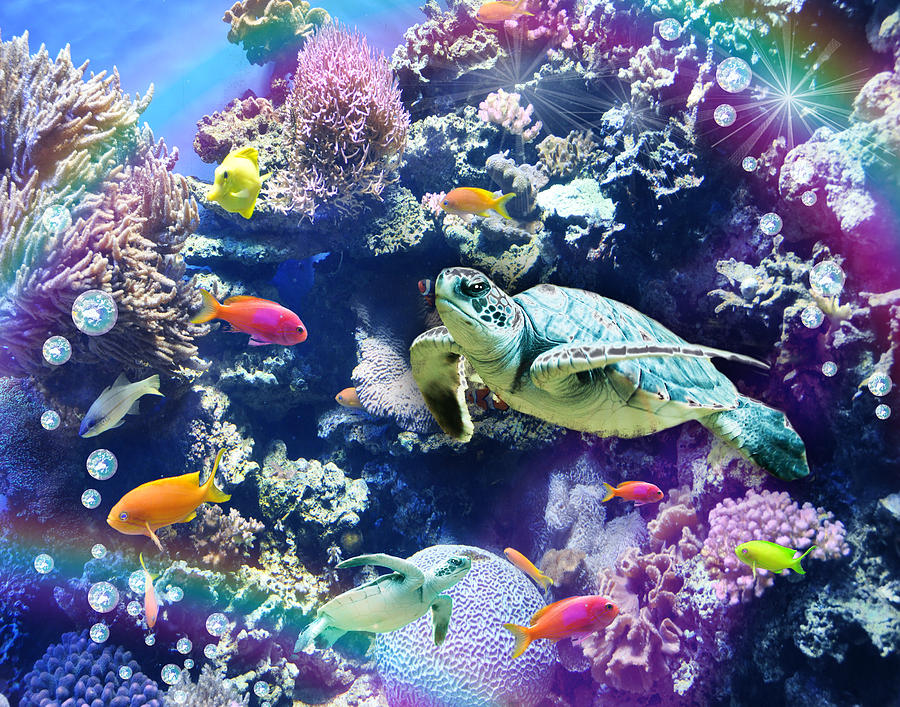 Fantasy Photograph - Aquarium by Alixandra Mullins