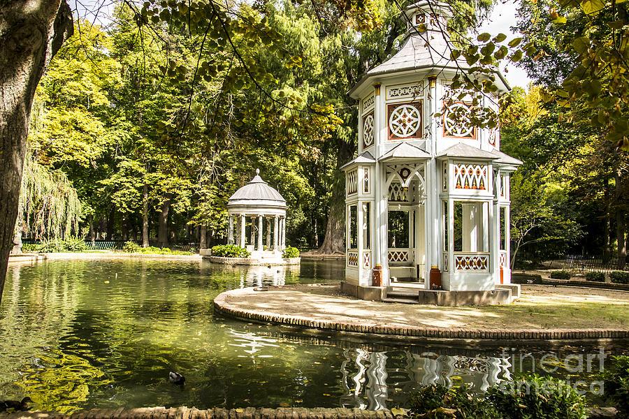 Aranjuez Photograph - Aranjuez Park Lake by Stefano Piccini