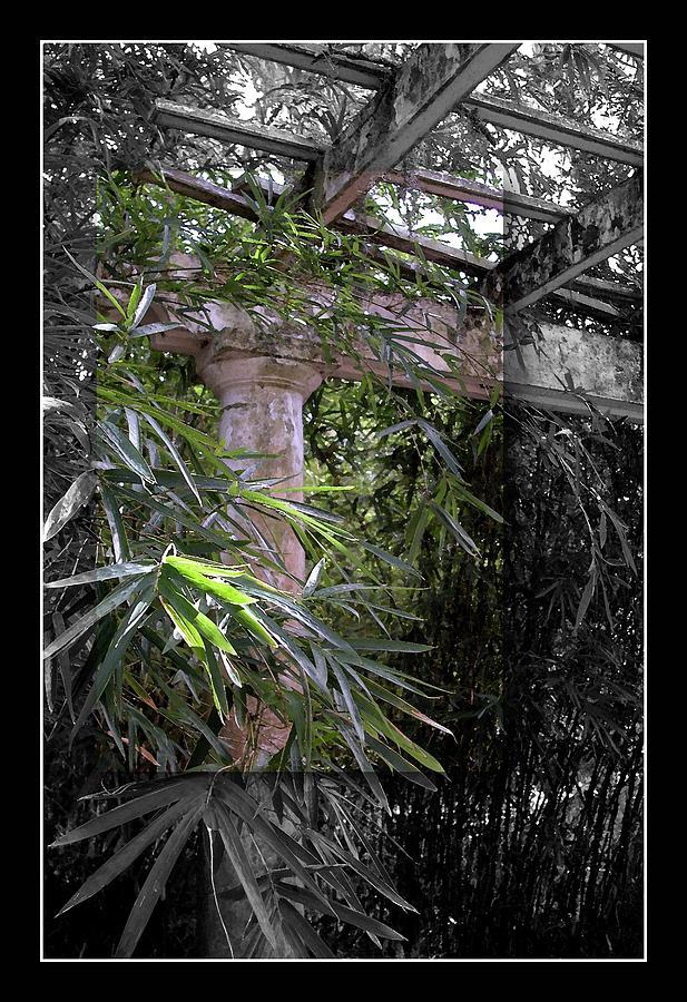 sapelo island chat Stacey's tours of sapelo island georgia come see what a beautful place sapelo island is.