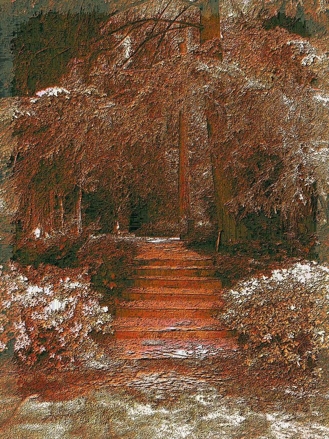 Arbor Digital Art - Arbor Steps by Tim Allen
