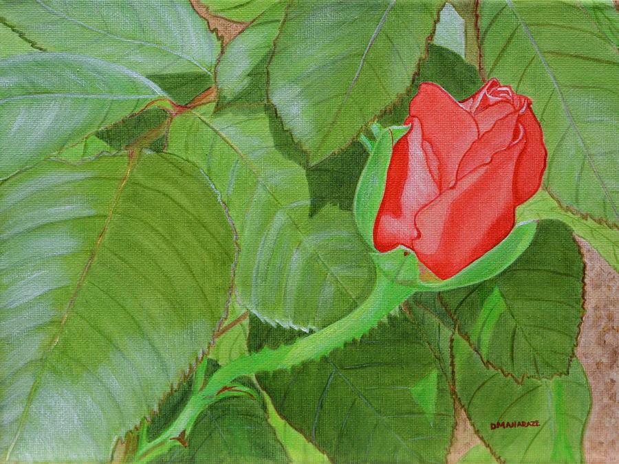 Arboretum Rose by Donna  Manaraze