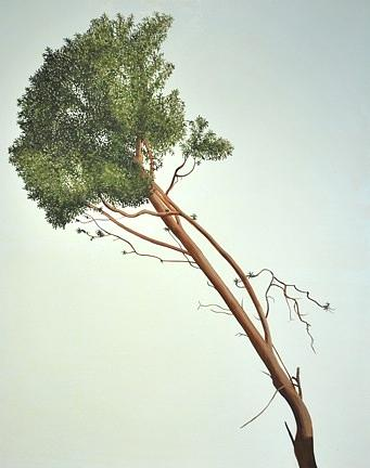 Nature Painting - Arbutus by Michelle Jean Giguere