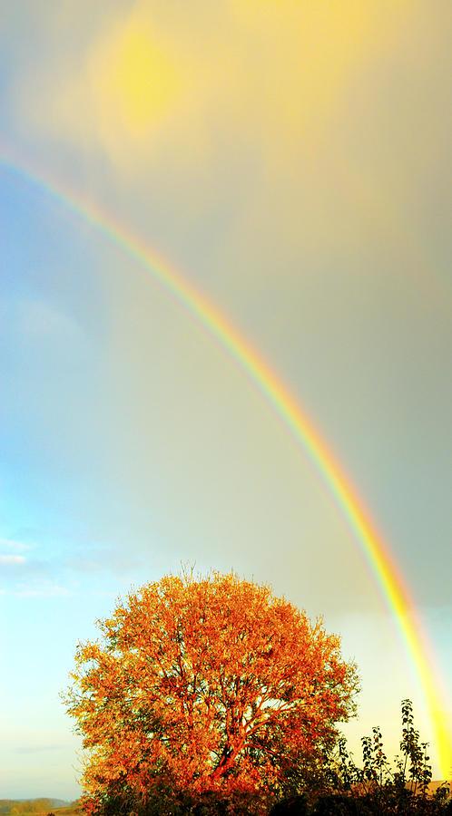 Arc Of The Rainbow Photograph