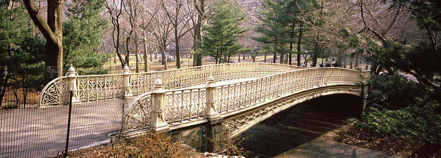 Color Image Photograph - Arch Bridge In A Park, Central Park by Panoramic Images