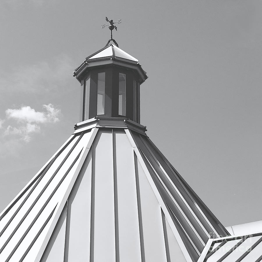 Roof Photograph - Architectural Gray by Ann Horn