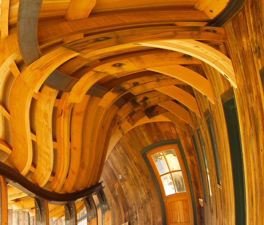 Twisp Photograph - Architecture By Seuss by Omaste Witkowski