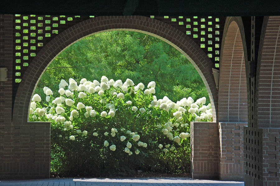 Archway Photograph - Archway To Glory by Suzanne Gaff