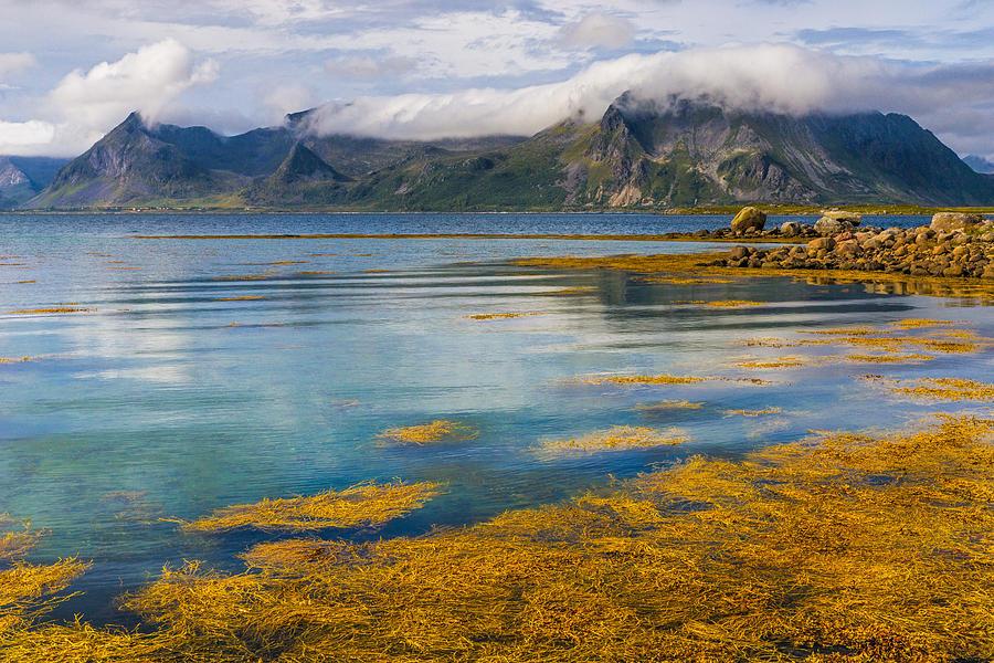 Polar Photograph - Arctic Circle Paradise by Maciej Markiewicz