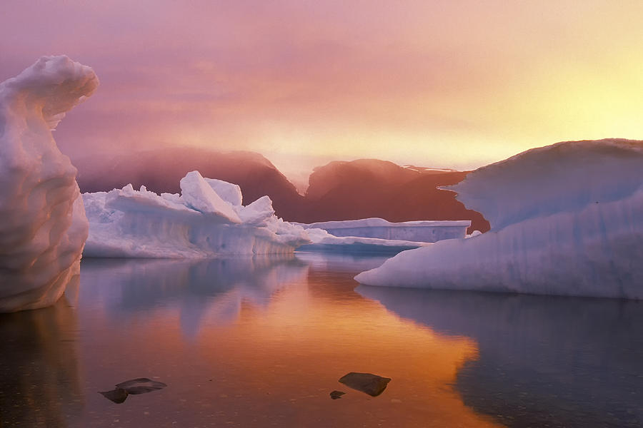 High Arctic Photograph - Arctic Splendour by Ralph Brunner