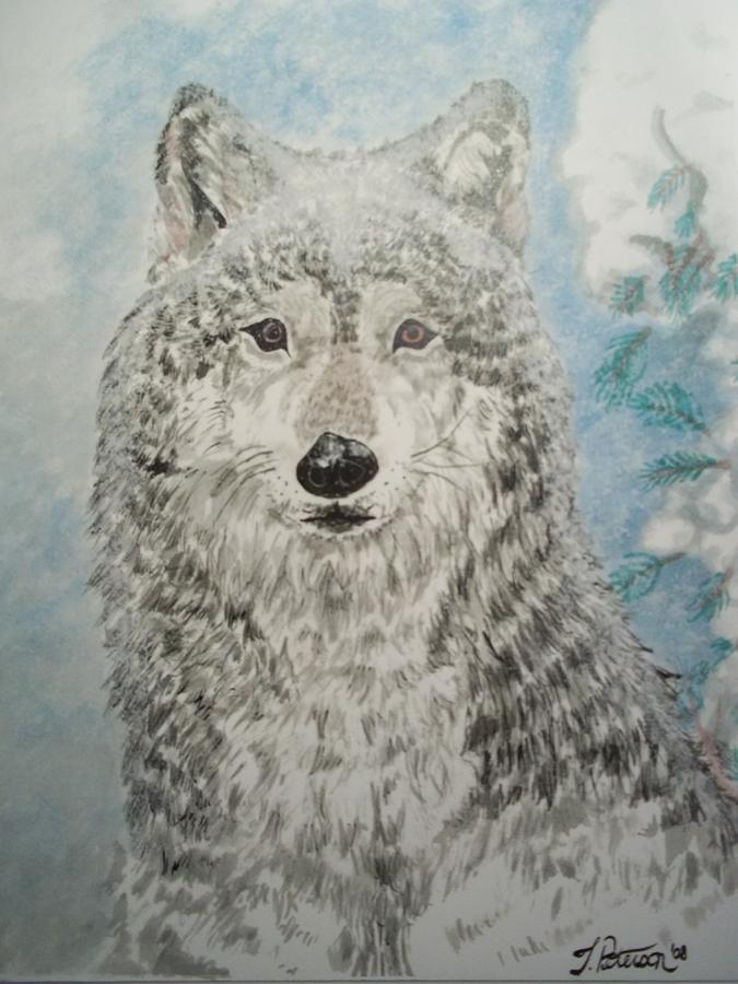 Wolf Painting - Arctic Wolf by Teresa  Peterson