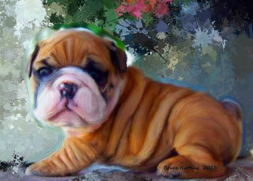 Puppy Painting - Are You Looking At Me by Bruce Nutting