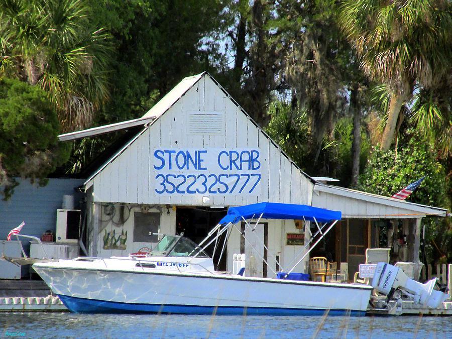 Wetlands Photograph - Aripeka Stone Crab Sales I by Buzz  Coe