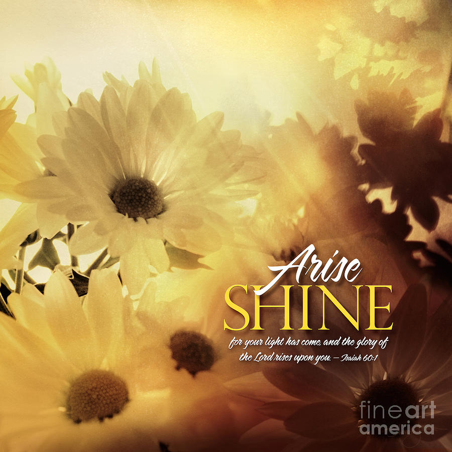 Arise Shine by Shevon Johnson
