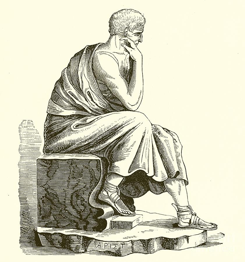 Aristotle Drawing by English School