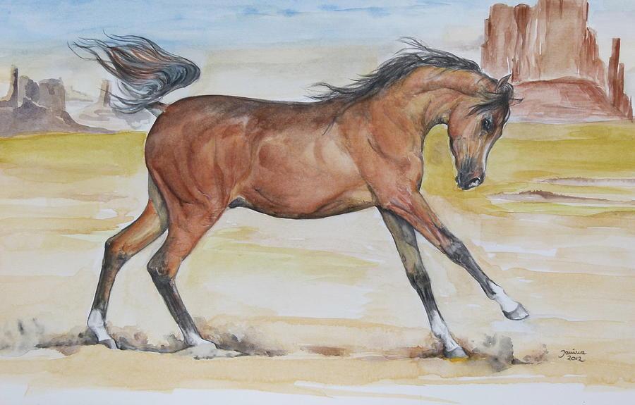 Equine Canvas Prints Painting - Arizona Baby by Janina  Suuronen