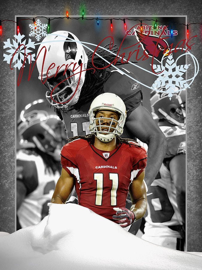 Cardinals Photograph - Arizona Cardinals Christmas Card by Joe Hamilton