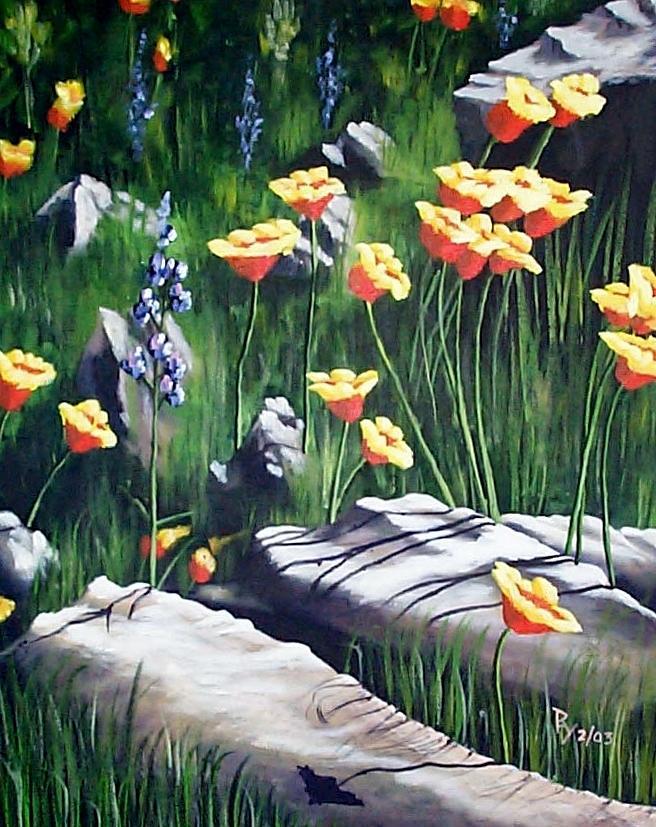 Arizona Poppies by Ray Nutaitis