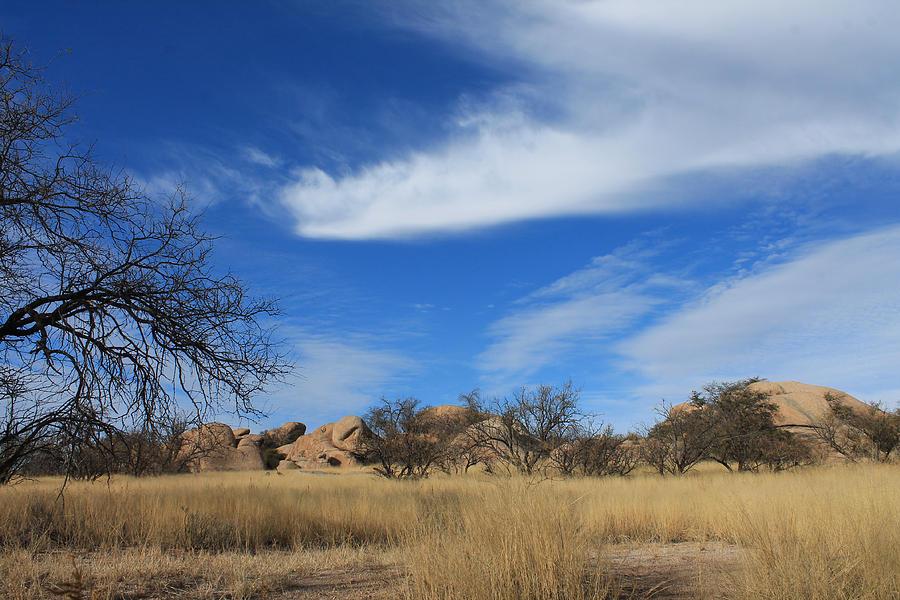 Arizona Skies Photograph