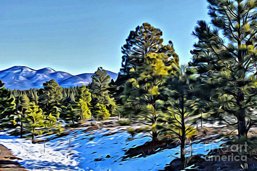 Pine Trees Photograph - Arizona Winter by Beauty For God