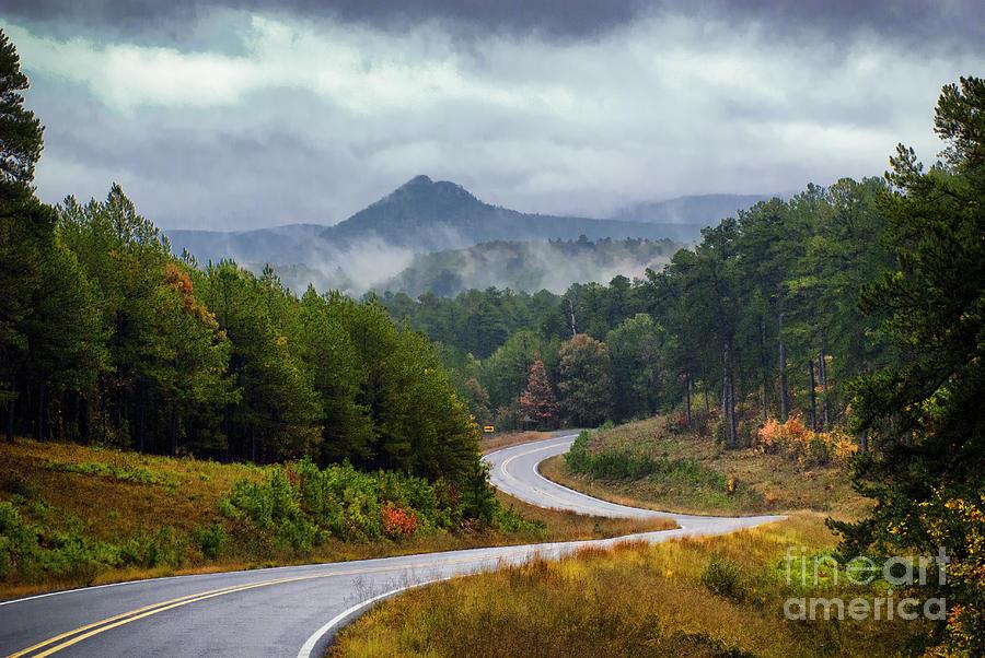 Storm Photograph - Arkansas Logging Road  by Richard Mason