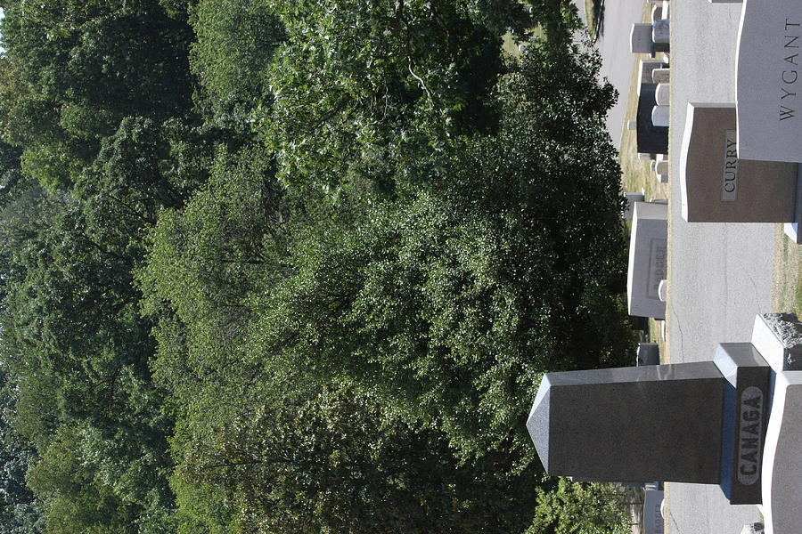 Arlington Photograph - Arlington National Cemetery - 121231 by DC Photographer