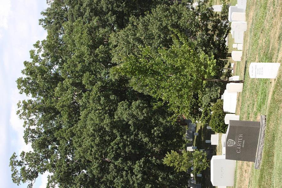 Arlington Photograph - Arlington National Cemetery - 121238 by DC Photographer