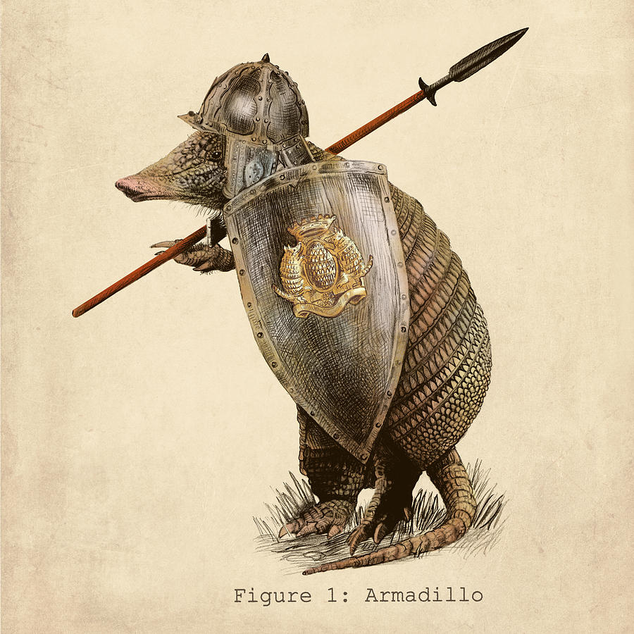 Armadillo Drawing By Eric Fan
