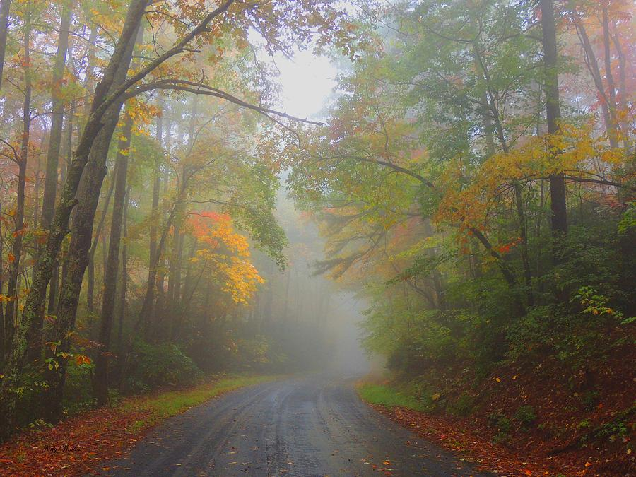 Fall Photograph - Around The Bend by Judy  Waller