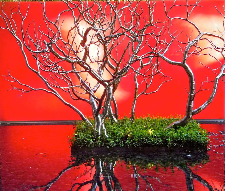 Red Photograph - Art Installation by Stephanie Moore