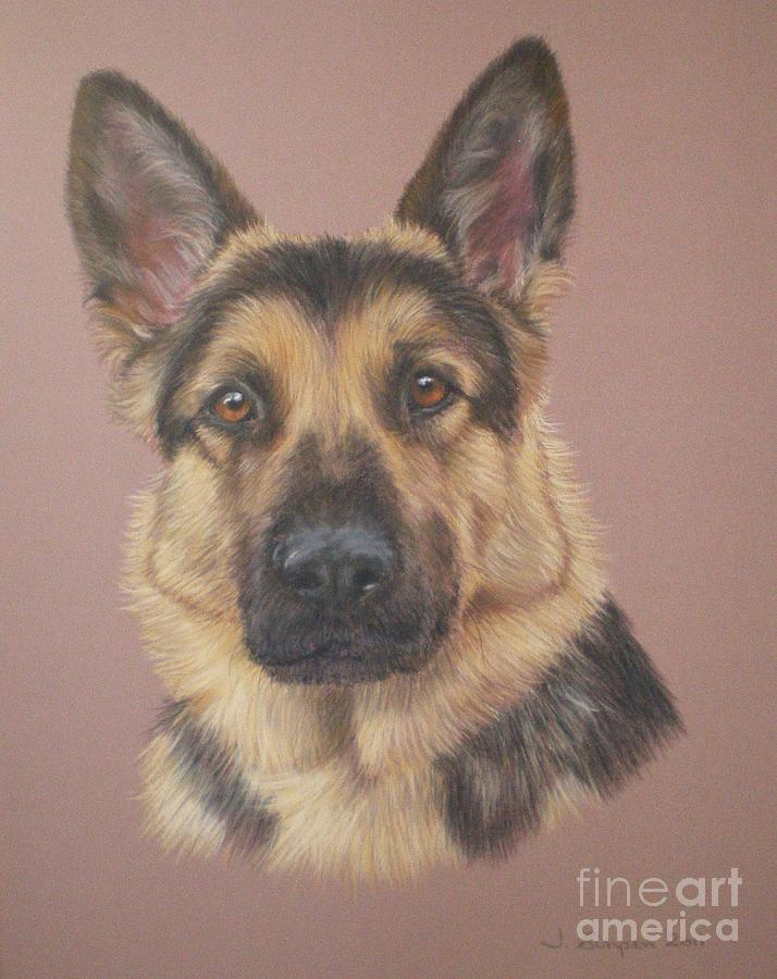 Dog Pastel - Arthur - German Shepherd by Joanne Simpson