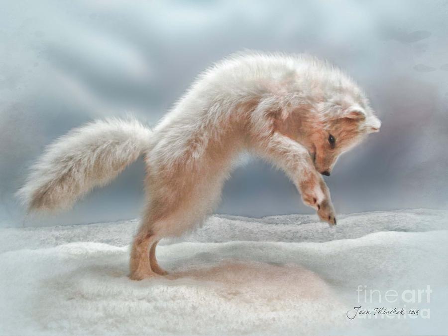 Artic White Wolf Photograph - Artic White Wolf by Joan  Minchak