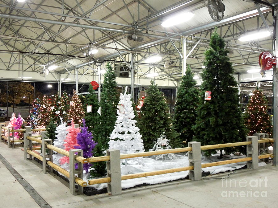 christmas photograph artificial christmas trees for sale by renee trenholm