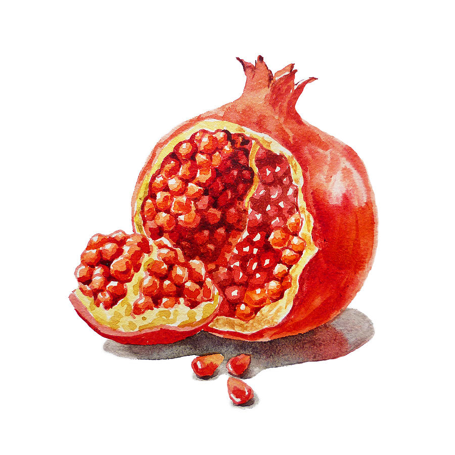 Artz Vitamins A Pomegranate Painting By Irina Sztukowski