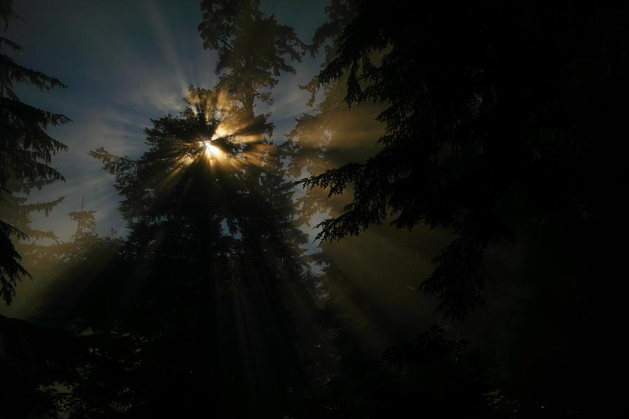 Sun Rays Photograph - As If I Needed Some Inspiration by Jeff Swan
