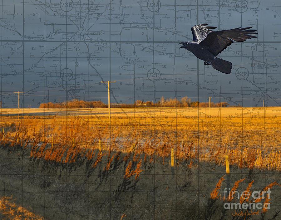 Prairie Landscape Digital Art - As The Crow Flies-fall Fields by Judy Wood